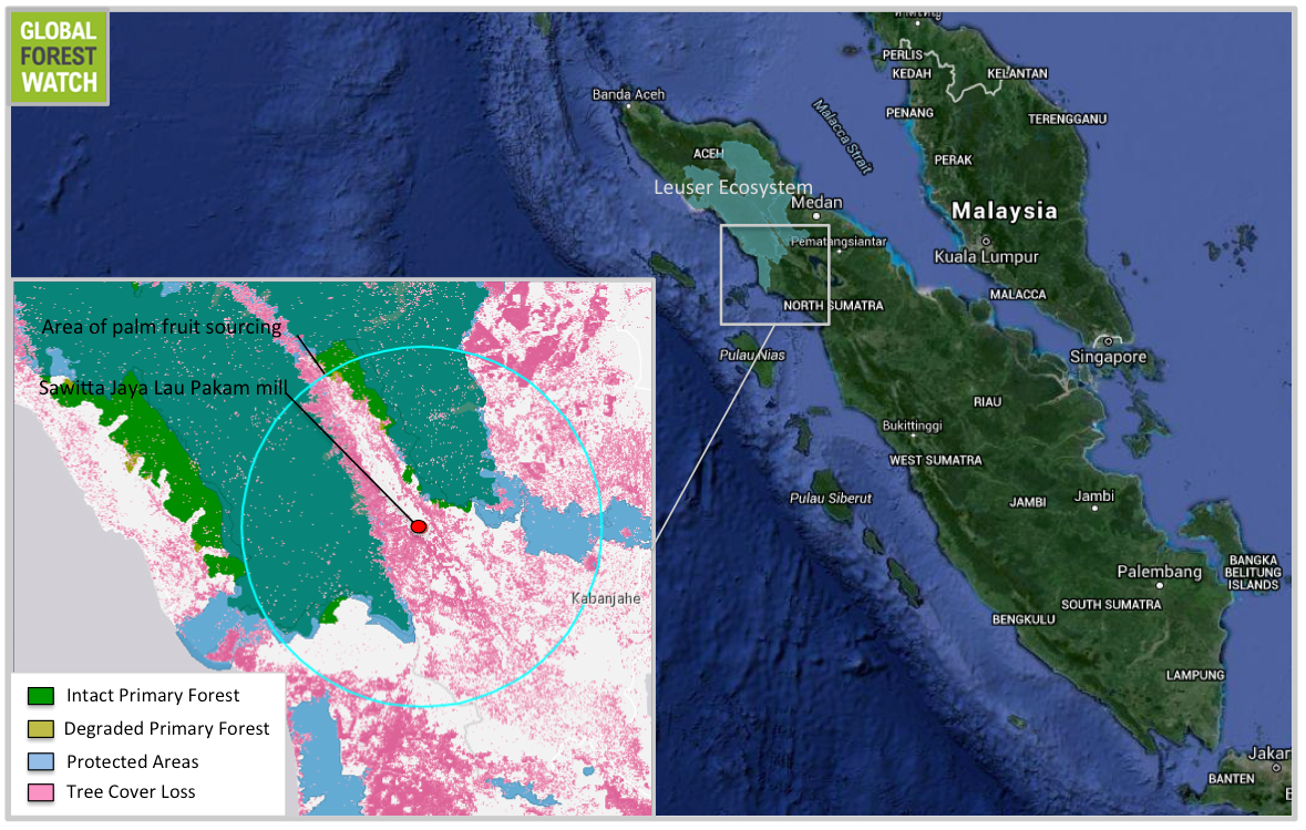 Sawitta Jaya Lau Pakam mill is surrounded on nearly three sides by the Leuser Ecosystem.
