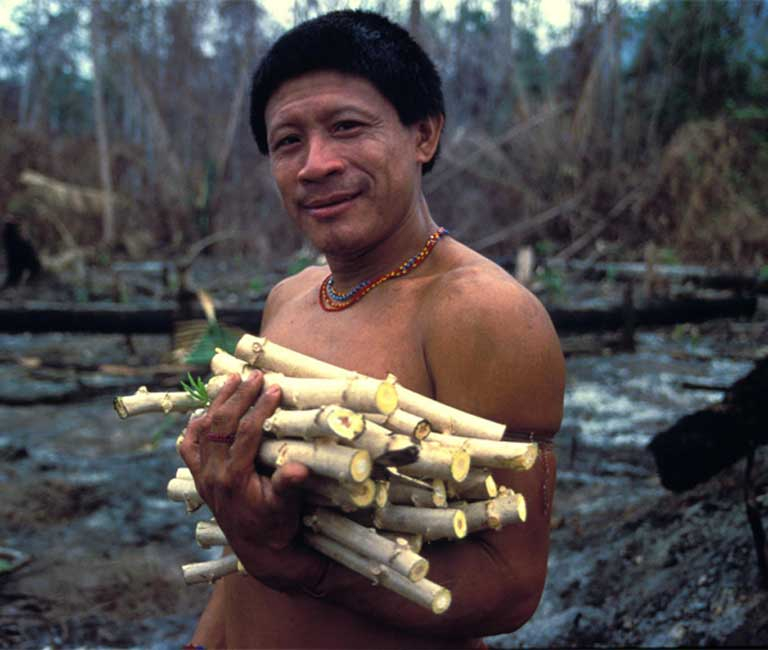 "The Arara were a peaceful nomadic people who wandered so freely they did not have a word in their language for ""village."" Photo © John Miles / Survival International (https://www.survivalinternational.org)"