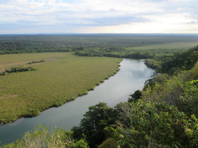 The San Pedro River marks the southern border of the Laguna del Tigre National Park. An oil palm plantation across the river in the Maya Biosphere Reserve's buffer zone lies in the background. Photo by Sandra Cuffe.