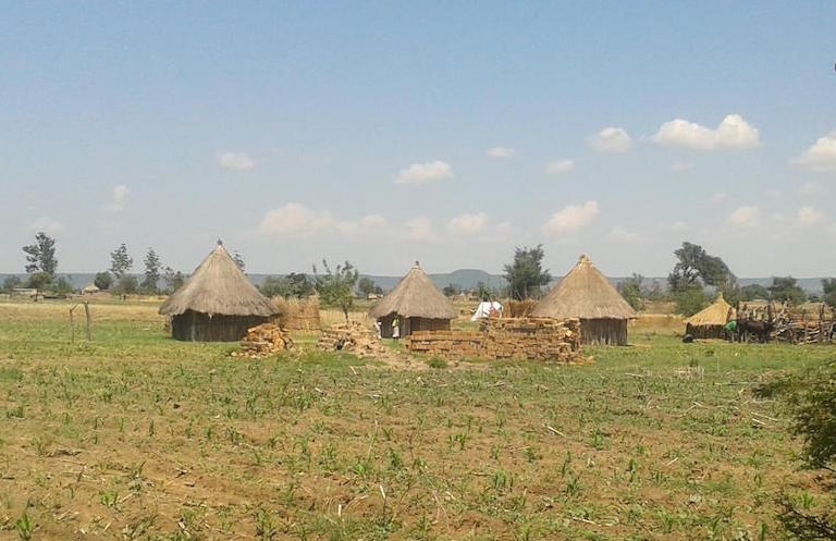 A homestead for some of the villagers displaced from their land by the Green Fuel ethanol plant. Photo courtesy of Platform for Youth Development.