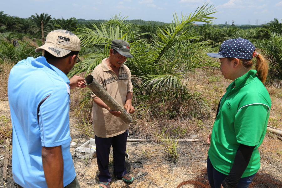 TFT staff talk to palm oil smallholder in Malaysia. Courtesy of TFT.