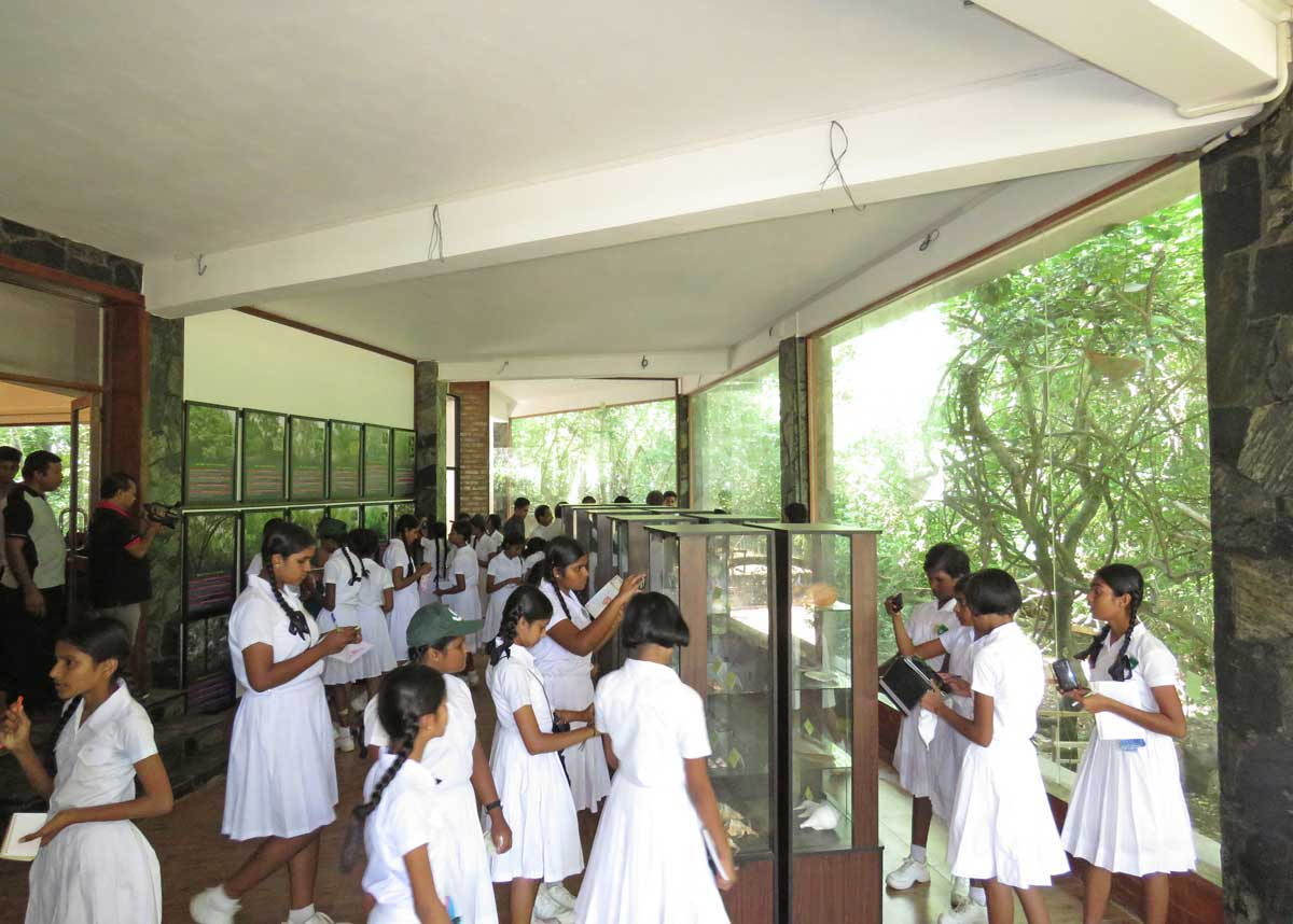 Children visit the new mangrove museum. Photo courtesy of Seacology