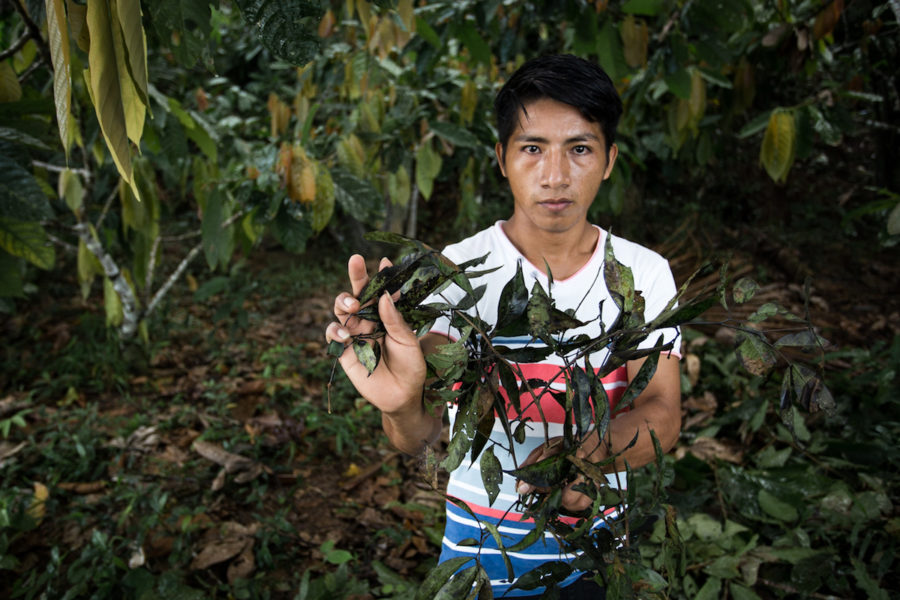 Jusoe Esash Unum holds leaves covered in crude oil taken from the shore of the Marañon River. Photo by Brett Monroe Garner.