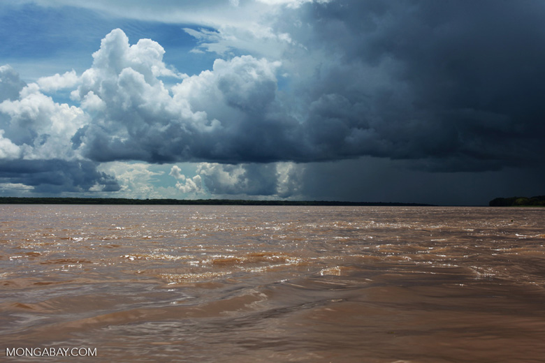 Thunderheads build up over the Amazon Basin. A 2010 drought caused tree growth to stall across the region, temporarily shutting down the Amazon carbon sink. Photo by Rhett A. Butler