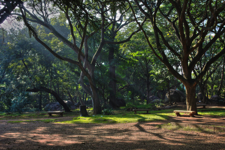 Cubbon Park is one of Bengaluru's most popular green spaces. Photo by Yair Aronshtam, from Flickr, CC BY-SA 2.0.