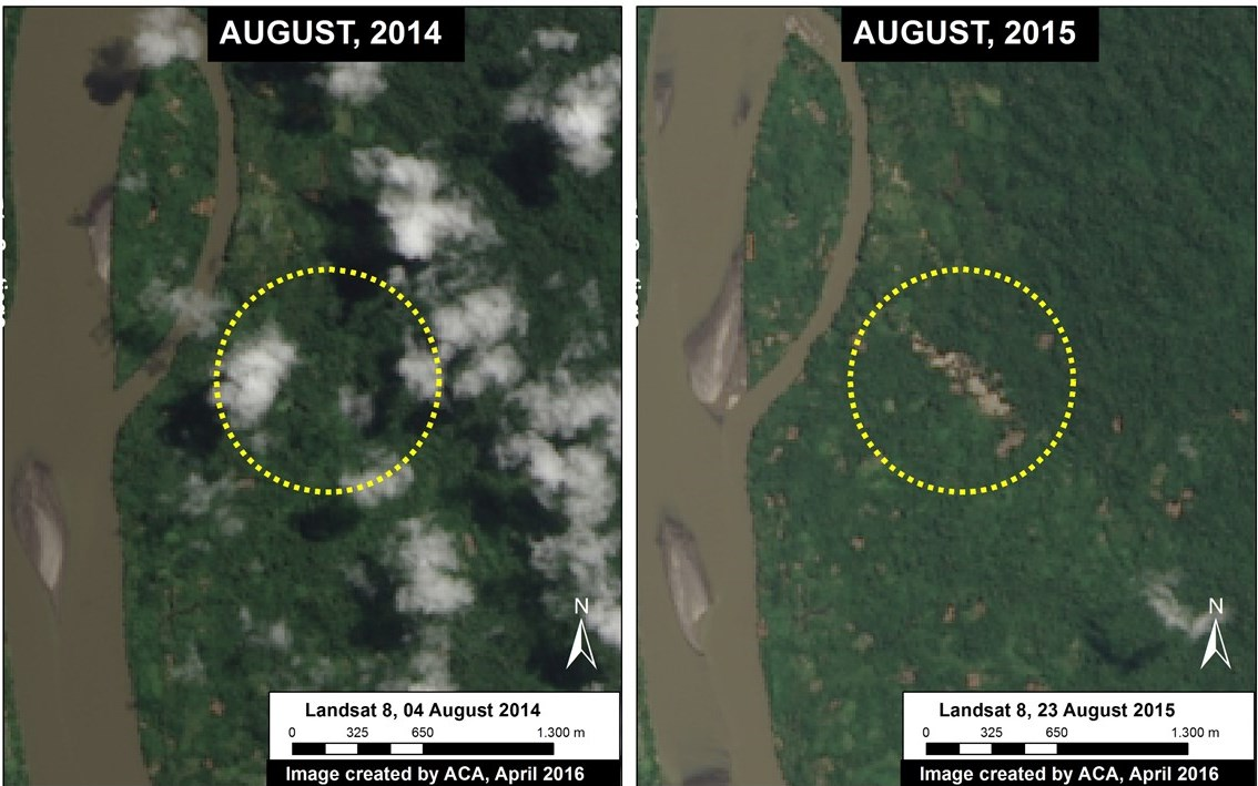 Satellite images taken a year apart show the mining-related deforestation happened between 2014 and 2015. Image courtesy of MAAP.
