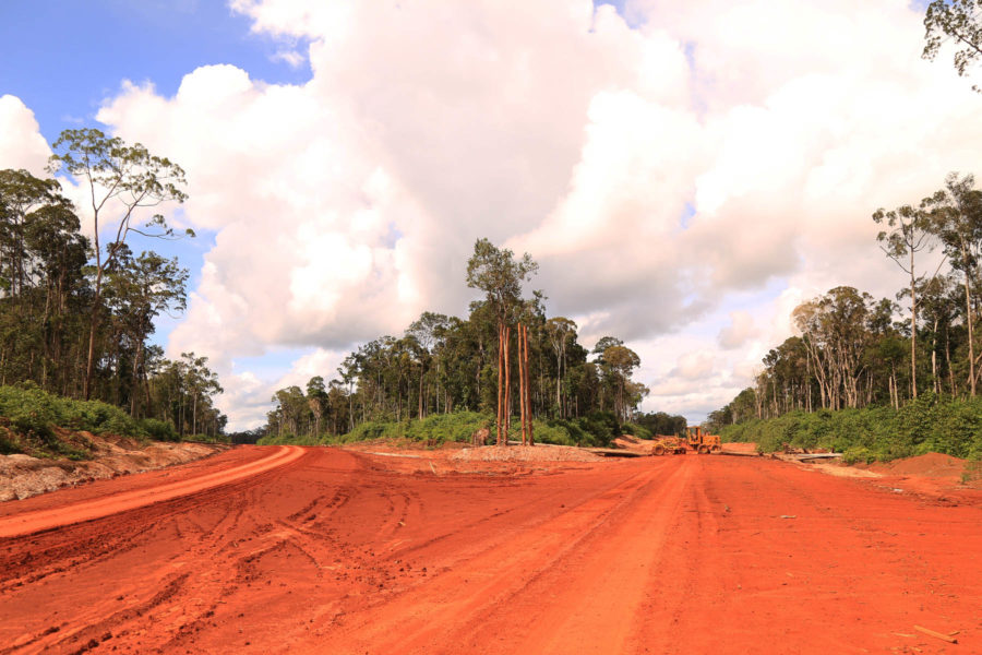 An access road into one of Korindo's concessions in Papua. Photo courtesy of Mighty