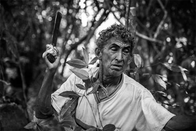 Chico Catitu, a ribeirinho (river bank dweller) who has a profound knowledge of the forest. Developers did not consult this local knowledgebase when planning Tapajós basin projects that would include major dams and an industrial waterway. Photo by Mauricio Torres