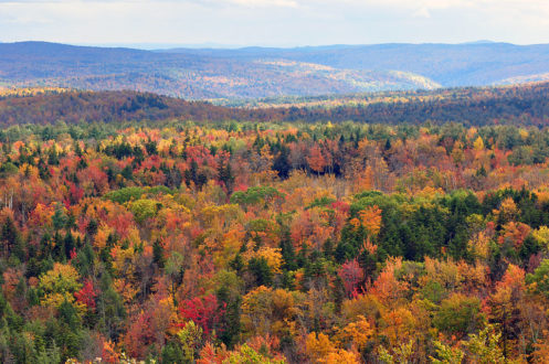 1024px-Vermont_fall_foliage_hogback_mountain