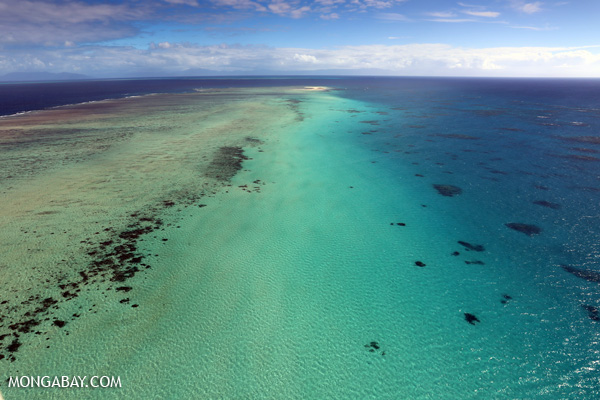 Australia's Great Barrier Reef, the scene of disastrous coral bleaching this year. Photo by Rhett A. Butler