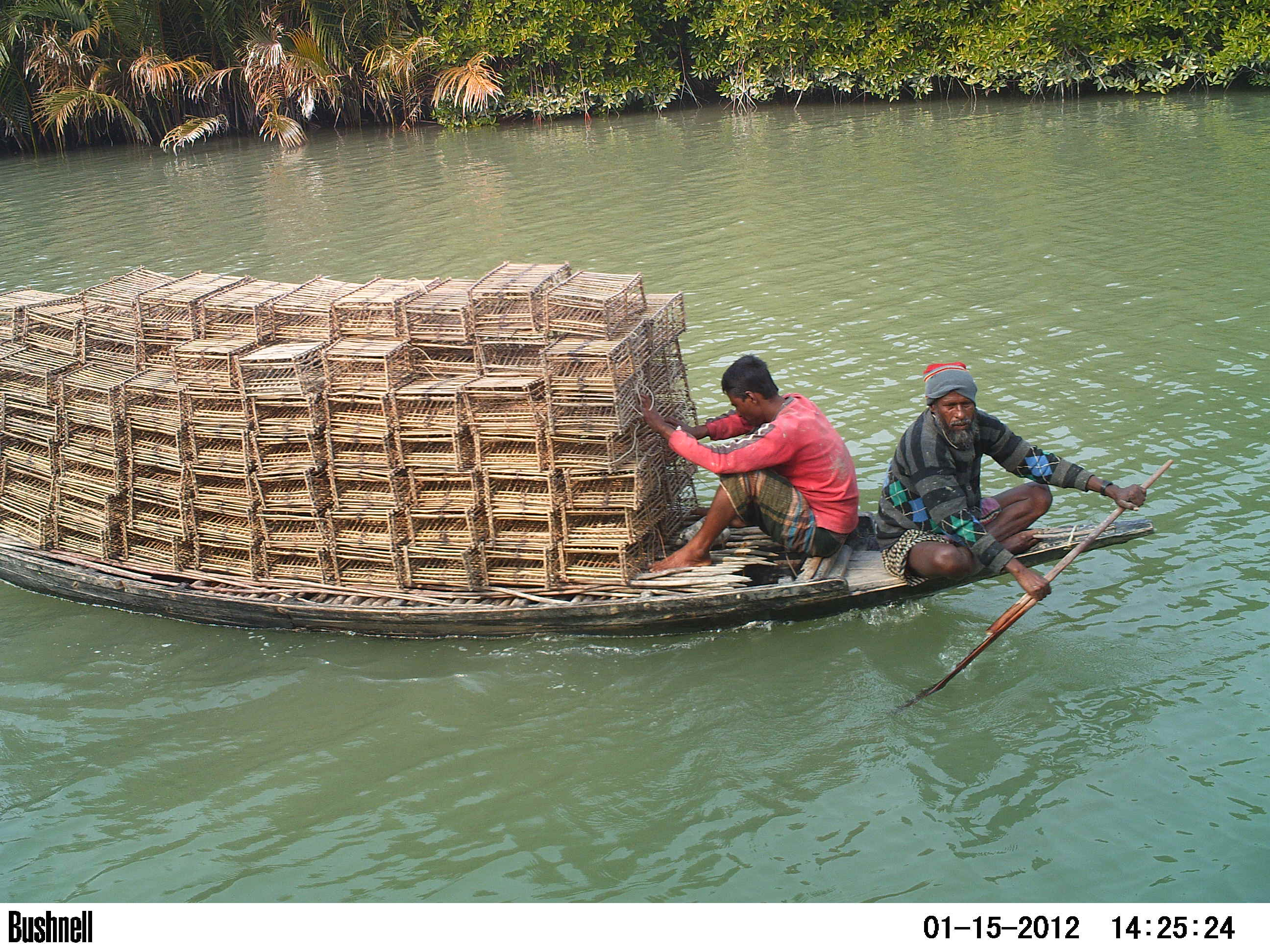 Another common Illegal Human Activity was crab fishing, easily recognizable by the presence of large amount of bamboo cages on the boats. Credits: A.N.M. Hossain, 2012