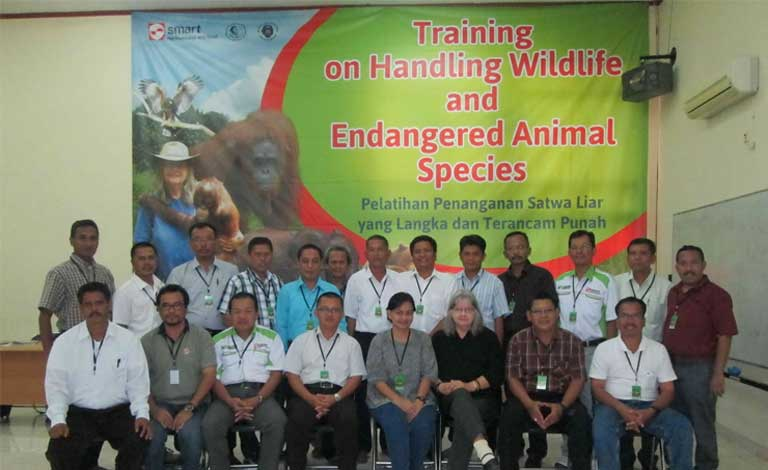 PT SMART manager level training conducted by Orangutan Foundation International. Photo courtesy of Renie Djojoasmoro/Orangutan Foundation International