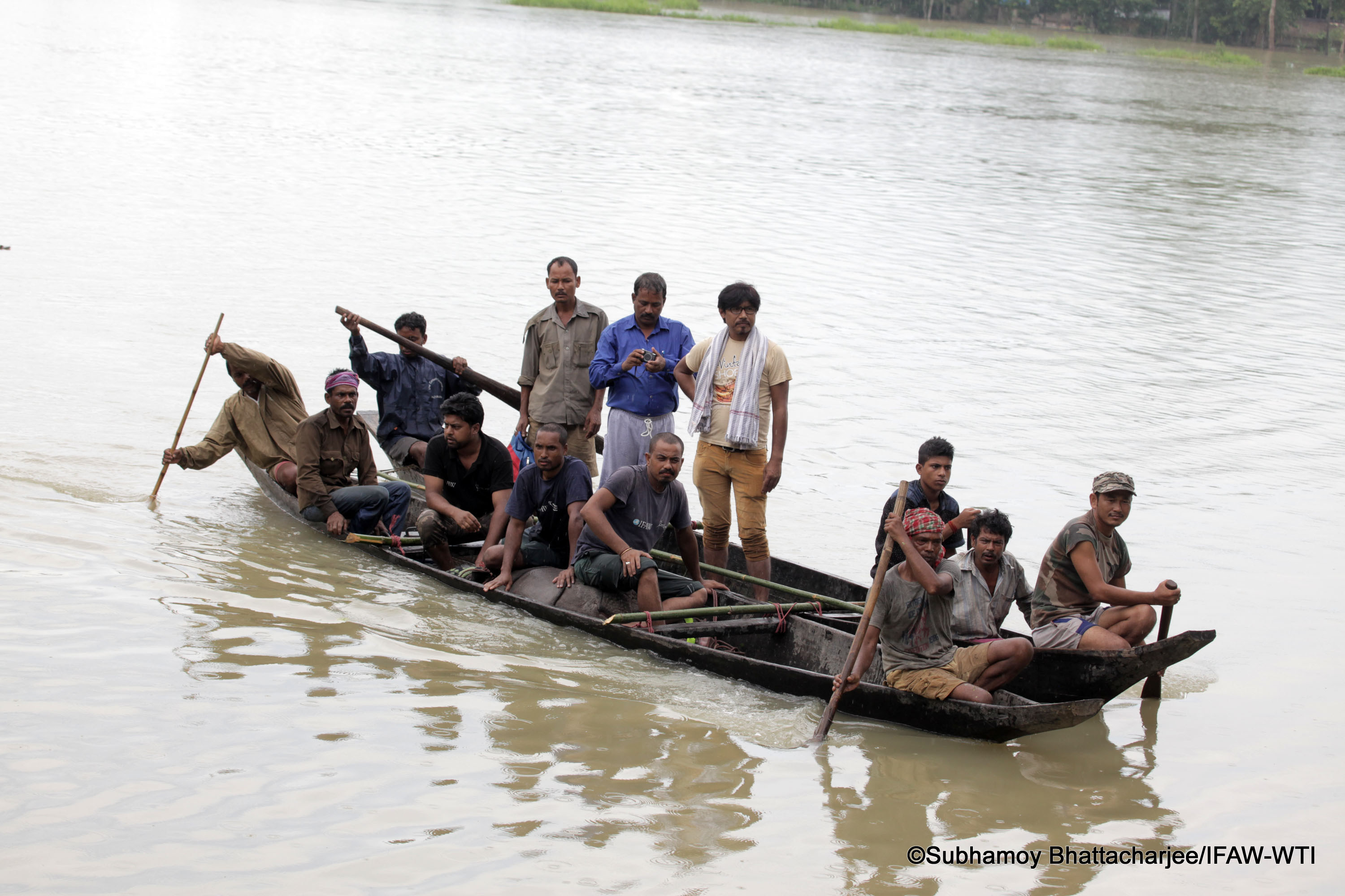 IFAW-WTI MVS team rescuing a rhino calf from flood affected Diphalu Pathar village with the help of Kaziranga forest staff, local villagers and NGO members of KNEECA on Wednesday, 27th July 2016. Photo credit: Subhamoy Bhattacharjee/IFAW-WTI.