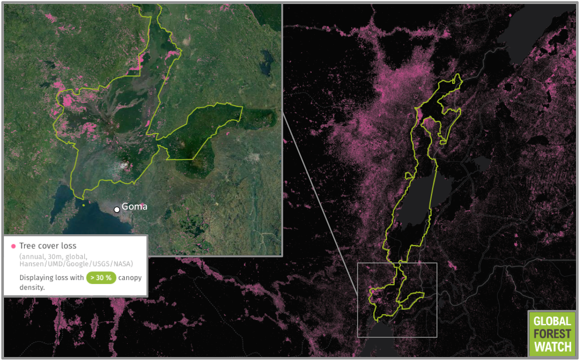 Data from the University of Maryland visualized on Global Forest Watch show Virunga National Park lost more than 5 percent of its tree cover between 2001 and 2014. The portion of the park near Goma has been particularly affected, losing 8.5 percent of its tree cover during the same period. Despite reported gains in charcoal reform from Eco-Makala, data indicate deforestation may again be on the rise in the park, more than doubling between 2012 and 2013.