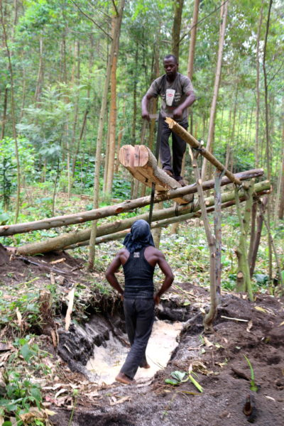Community members harvest timber near Sake, which holds a weekly timber market that attracts customers from all over the DRC. Photo by Sophie Mbugua