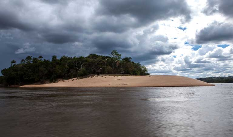 Islands will be drowned by the construction of the São Luiz do Tapajos dam. Amazon islands offer habitat for both terrestrial and freshwater aquatic species, including nesting turtles. Photo by Lilo Clareto/Repórter Brasil