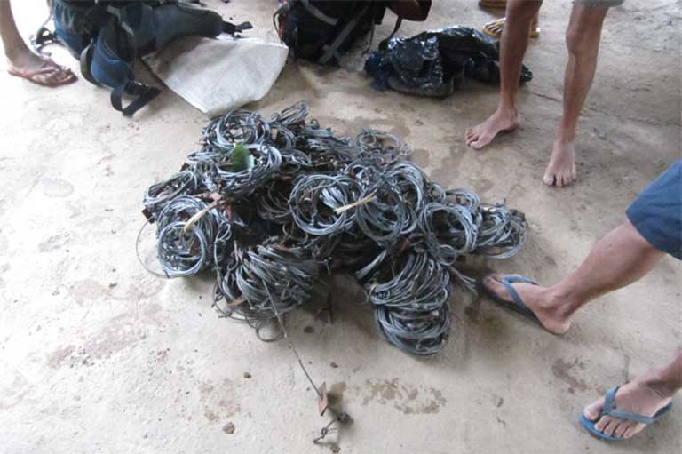 Confiscated bear snares. Sun bears are illegally trafficked for their gall bladders, which provide bear bile to China and other countries for traditional medicine. Lorraine Scotson / Free the Bears