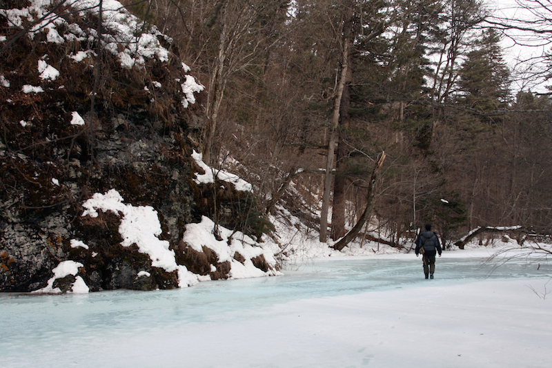 Walking the same river that Vladimir Arsenyev did, 110 years later, in what is now the Sikhote-Alin Biosphere Reserve. Credit: Jonathan C. Slaght, WCS Russia.