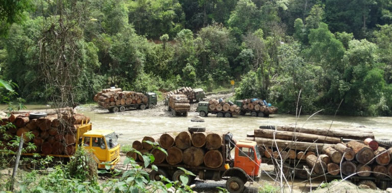 Log trucks in Kachin waiting to cross into China in April 2015. Photo courtesy of Environmental Investigation Agency