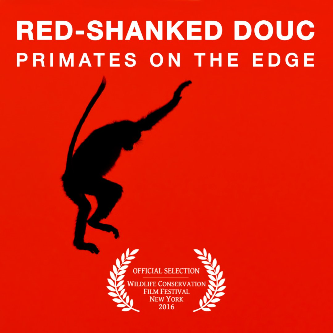 red-shanked-douc-poster