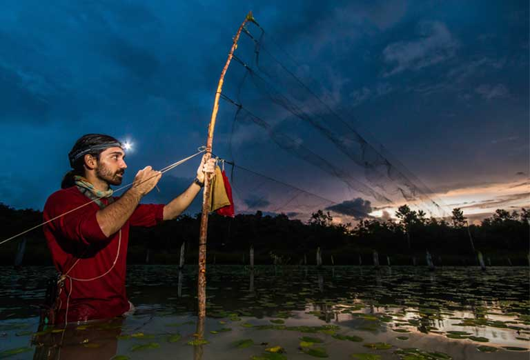 Mist-nets were even set in the middle of lakes in order to target particular species, and as a result, the researchers had close encounters with anaconda, tapir, and caiman during their time in the field. Photo © Oriol Massana & Adrià López-Baucells