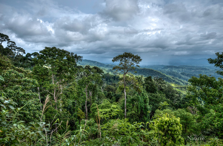 Chittagong Hill Tracts, falls within the Indo-Burma Biodiversity Hotspot, covers 10% of the total land area of Bangladesh. Photo Credit: Creative Conservation Alliance