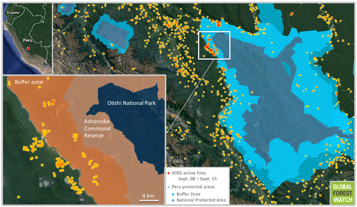Data from NASA displayed on the forest monitoring platform Global Forest Watch (GFW) show fires approaching the Ashaninka Communal Reserve and Otishi National Park. By September 15, the fires had moved within two kilometers of the reserve and five kilometers of the national park.
