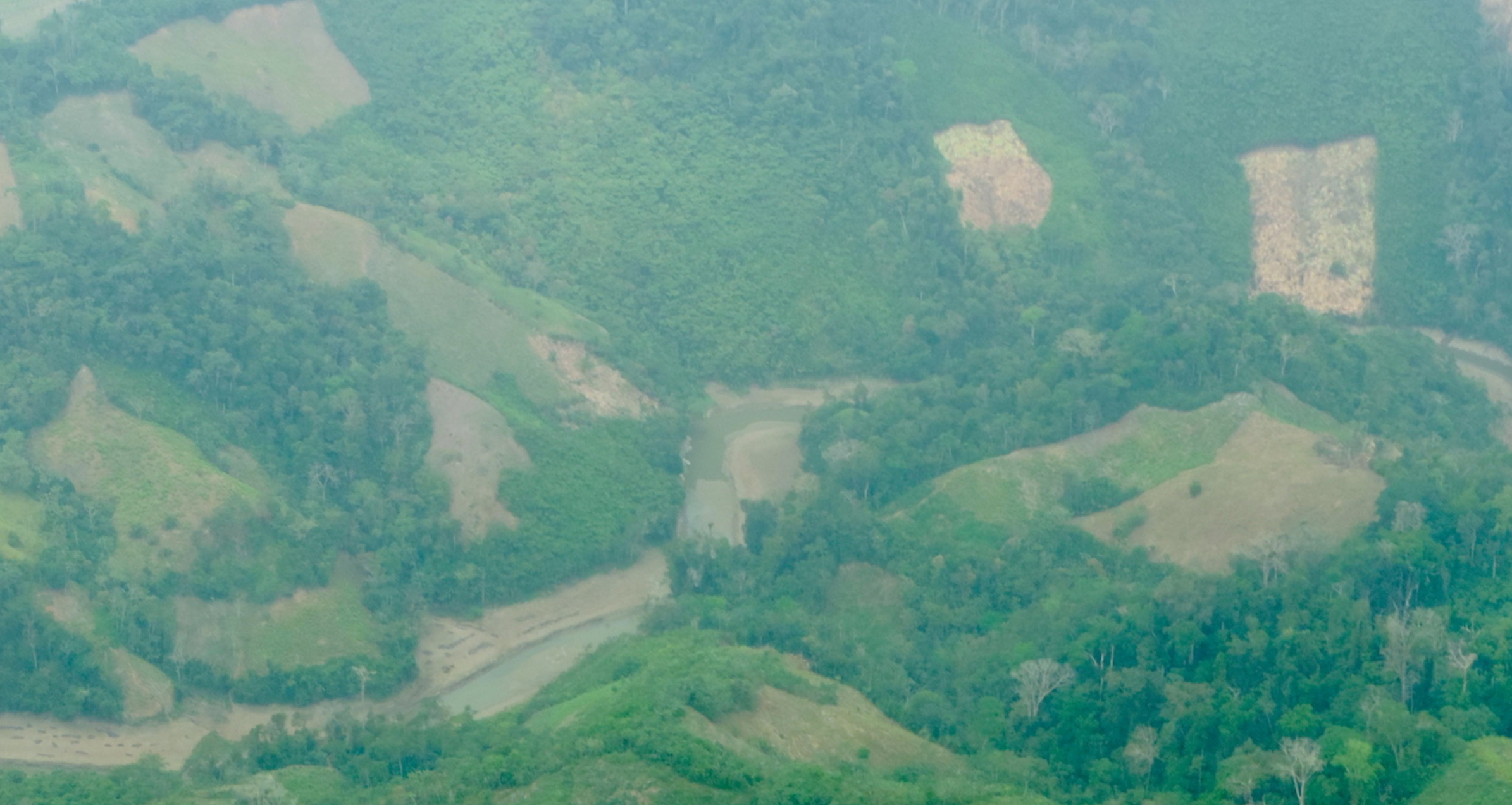 deforestation-in-colombia-paramillo-natural-national-park