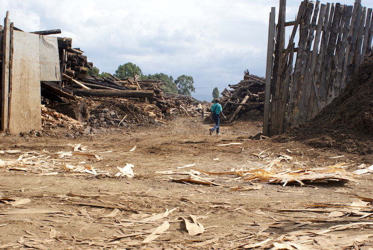 A packed saw mill is a sign of the high level of logging within Mau forest in Kenya's Rift Valley. Photo by David Njagi