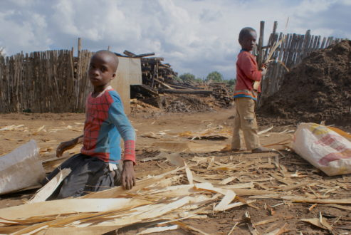 Young boys labor outside a saw mill in the town of Njoro in Kenya's Rift Valley. Photo by David Njagi