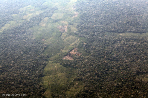 Deforestation along the Peru, Brazil border. Photo by Rhett Butler.