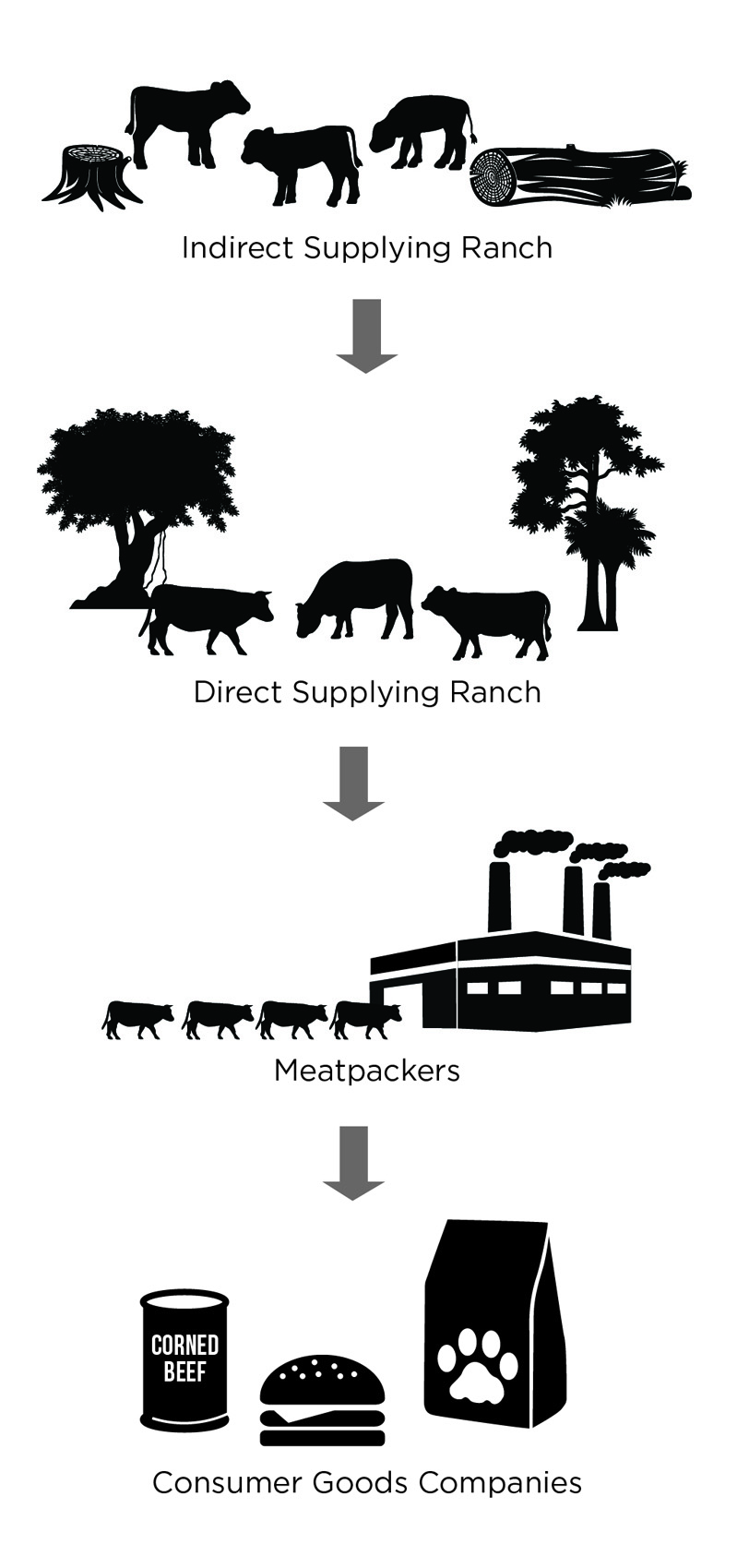 This is one example of how beef associated with deforestation enters the supply chain—through a meatpacker's indirect supplying ranches. Indirect supplying ranches are often not monitored for deforestation. However, many meatpackers do not monitor their direct supplying ranches for deforestation either