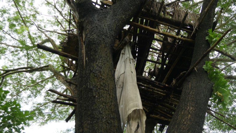 A battered tree house that villagers say was abandoned because it was attacked by elephants. Courtesy of David Doyle