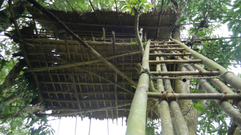 A tree house in a remote village in Myanmar built for safety from elephants. Courtesy of David Doyle