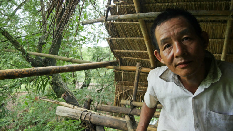 U Sein Than perches in a tree house built as a refuge from elephants. Courtesy of David Doyle