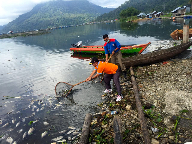 Farmers use nets to clean the lake. Photo by Viniola