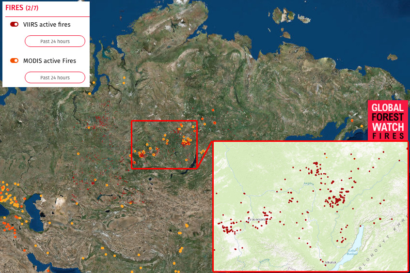 Fire hotspots in southern Russia as of September 9, 2016 according to Global Forest Watch.