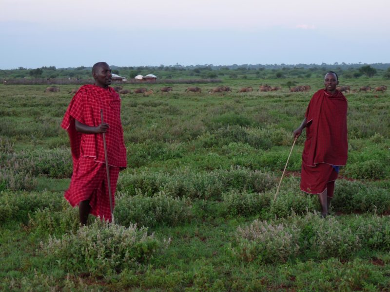 The Ujamaa Community Resource Team works with more than 70 communities in northern Tanzania, helping them own and manage their land, benefiting both people and wildlife.