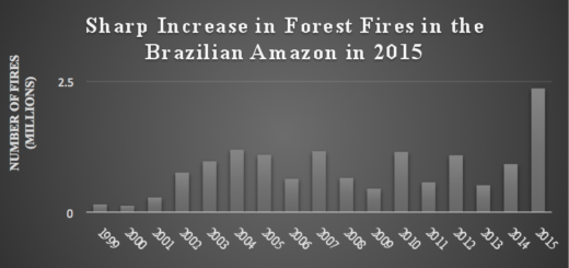 Sharp increase in forest fires in the Brazilian Amazon in 2015