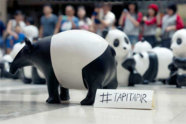 Kelvin Low's #TAPITAPIR project drew public attention to the tapir's plight. Photo courtesy of Kelvin Low