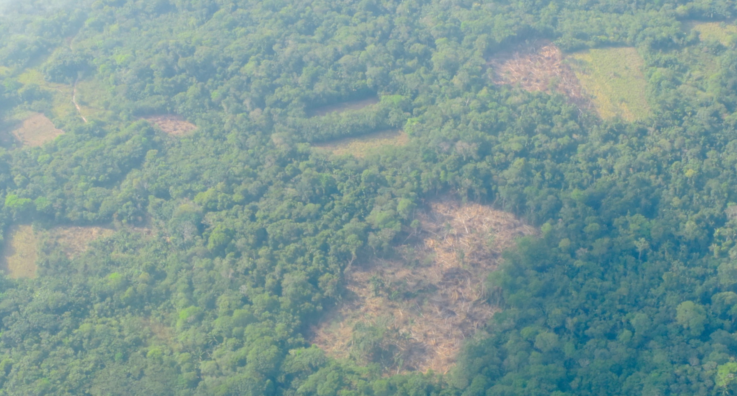 deforestation-in-colombia-nukak-natural-national-park