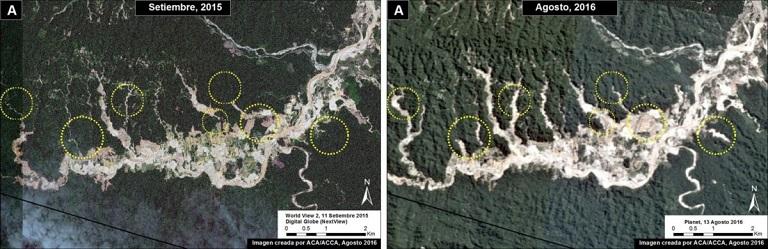 Progression of deforestation in Bahuaja-Sonene National Park. Image courtesy of MAAP. Data from Planet, Digital Globe (Nextview)