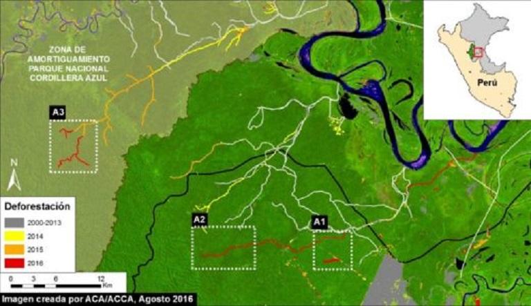 Deforestation in Cordillera Azul National Park. Image courtesy of MAAP. Data from UMD/GLAD, Hansen/UMD/Google/USGS/NASA, SERNANP