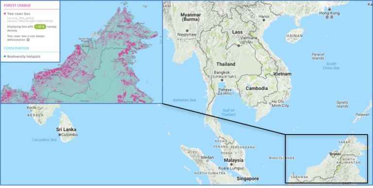 "All of Malaysian Borneo – and the entire island, in fact – is considered a biodiversity hotspot. At the same time, many of Borneo's rainforests have been logged. A new study highlights the importance of even these 'degraded' forests for biodiversity conservation. Sources: Conservation International. ""Biodiversity hotspots."" Accessed through Global Forest Watch on 26 October 2016. Hansen/UMD/Google/USGS/NASA, accessed through Global Forest Watch on 26 October 2016. www.globalforestwatch.org"
