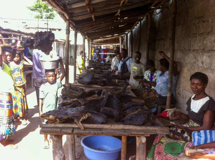 Vendors sell smoked bushmeat in a Congolese (DRC) market. Photo by John C. Cannon