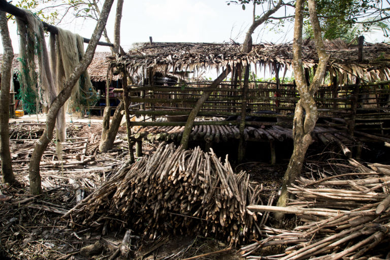 Piles of wood can be seen at villagers surrounding Mein-ma-hla Kyun Wildlife Sanctuary (MKWS). Photo by Ann Wang