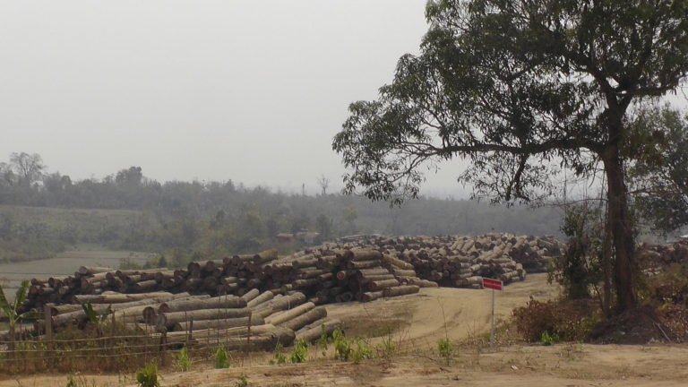 A Myanmar Timber Enterprise log depot in Sagaing Division holds stockpiled timber. Photo courtesy of Environmental Investigation Agency