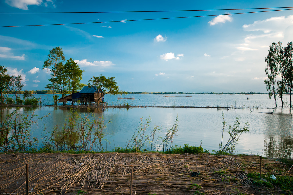 A farmhouse sits on stilts above a flooded rice paddy in the Mekong Delta. Photo by Daniel Hoherd/Flickr
