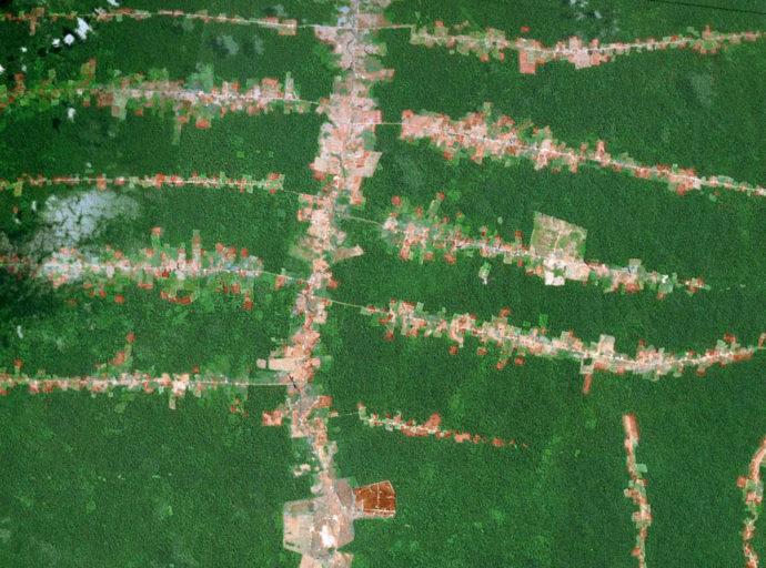 Forest fragmentation in the Brazilian Amazon. Photo courtesy of NASA
