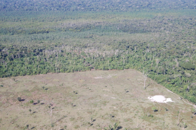 Land clearing in the Brazilian Amazon. Photo courtesy of the Brazilian Forest Service